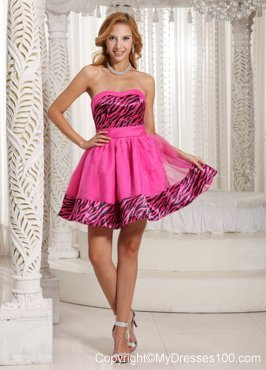 Stylish Zebra 2013 Short Homecoming Dresses With Hot Pink