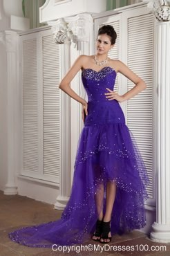 Mermaid Tulle Prom Dress in Purple Made for Customers